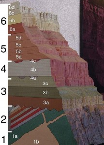 A cross section model of the Grand Canyon showing the rock layers and how they are broken into recognized formations.