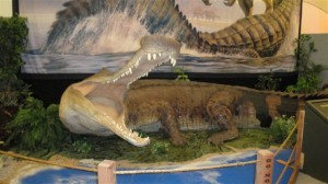 Restoration of Sarcosuchus, the SuperCroc