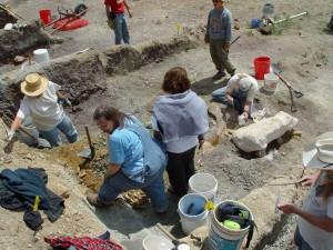 Volunteers excavate dinosaur fossils from the Woody site