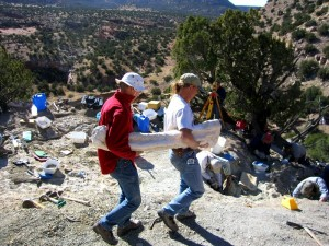 Plastered dinosaur bone being carried out of the LC Site